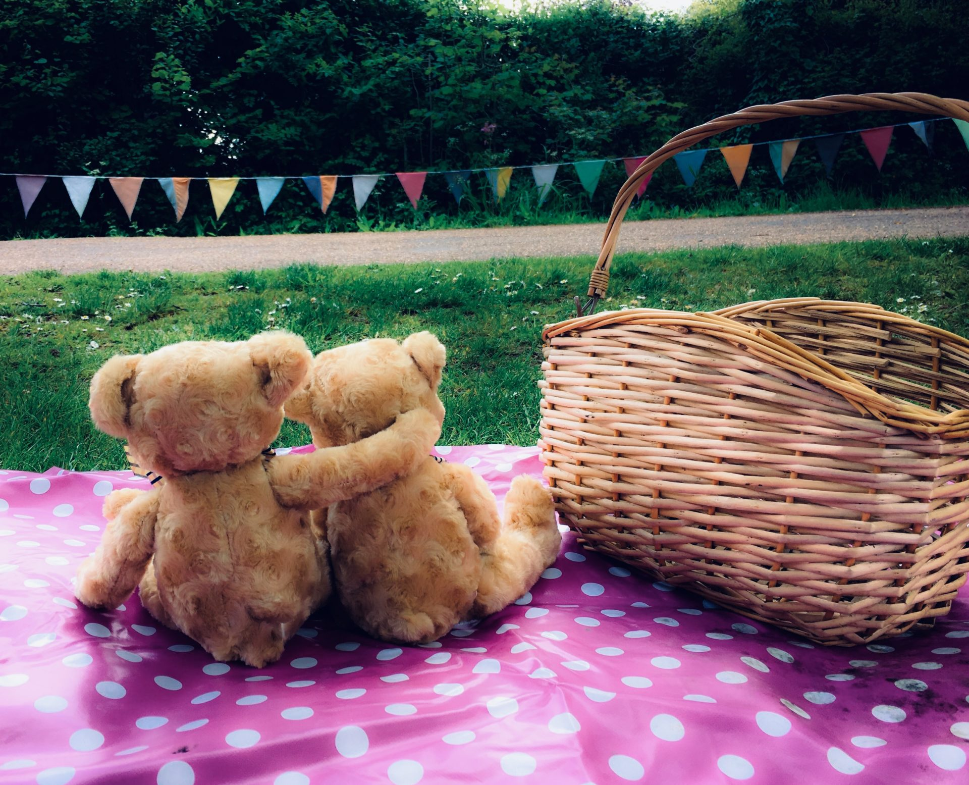 It's picnic time for teddy bears at Avoncroft this Bank Holiday!