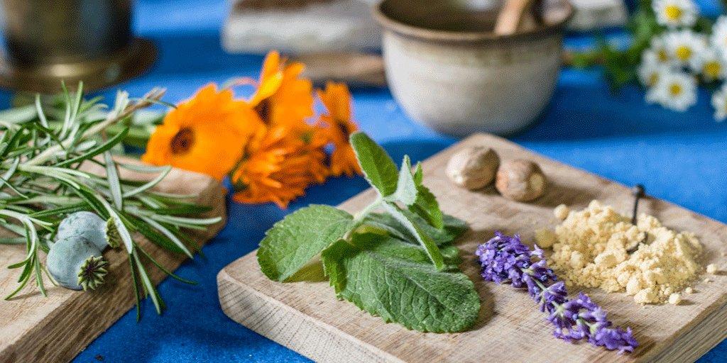 Medieval Herbal Remedies – October 2019
